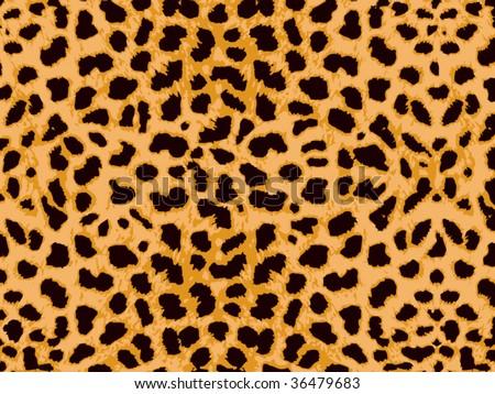 Leopard Skin vector - stock vector
