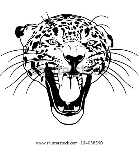 leopard wild cat outline black and white vector - stock vector