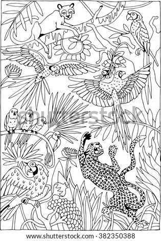 Leopards and Parrots in the Jungle coloring page