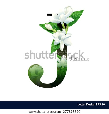 Letter J  vector alphabet with Jasmine flower. ABC concept type as logo. Typography design - stock vector