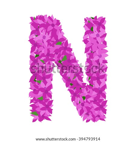 What are some flowers that begin with the letter N