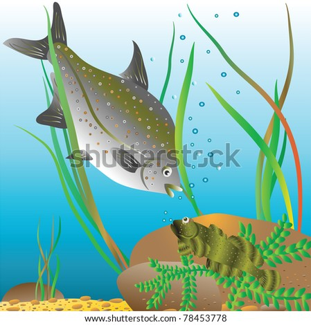 Life of river fishes. Vector illustration. - stock vector