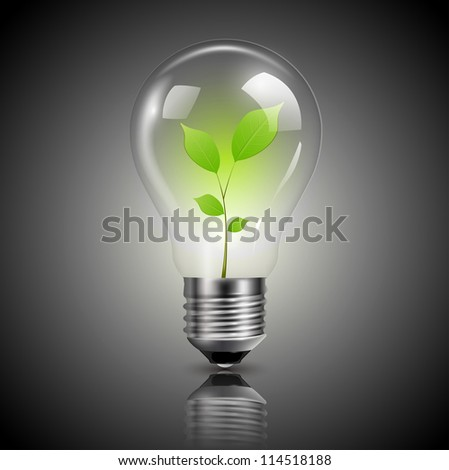Light bulb with green sprout inside, vector. - stock vector