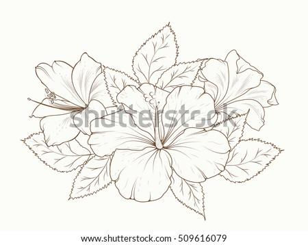 Lily Hibiscus Flowers Garland Bouquet Floral Stock-Vektorgrafik ...