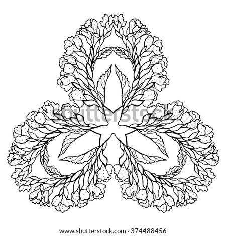 Statice Flower Drawing