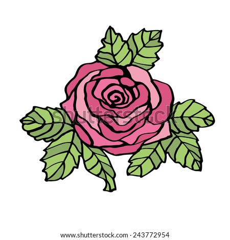 Line drawing pink rose. - stock vector