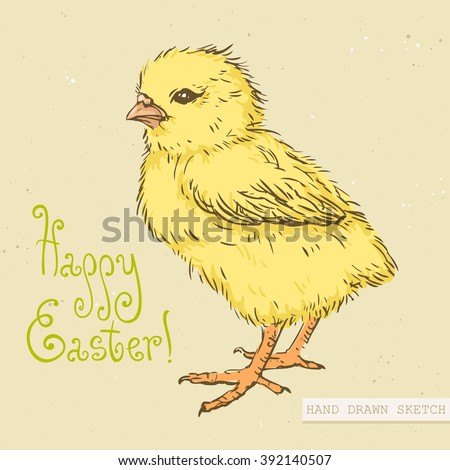 Baby Chick Stock Images, Royalty-Free Images & Vectors   Shutterstock
