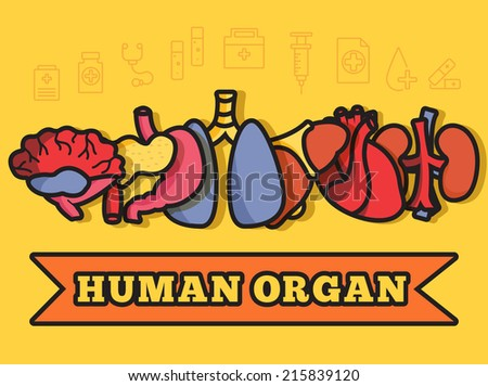 lines style human organs set icons concept background with ribbon. vector illustration design - stock vector