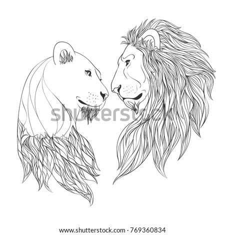 Lioness Face Stock Images Royalty Free Images Vectors