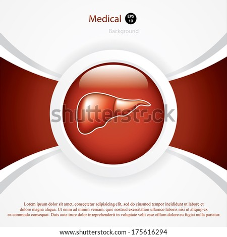 Liver background.Vector - stock vector