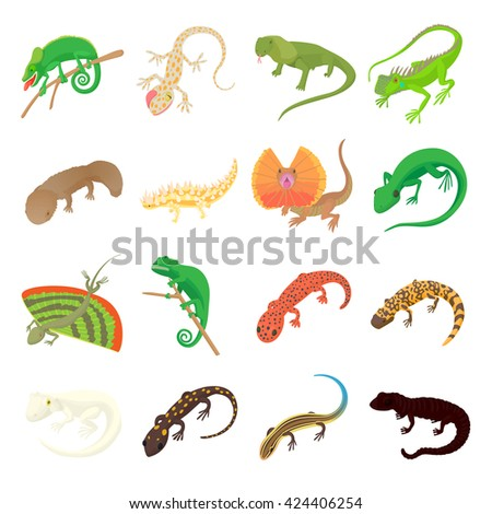 Tailed Amphibians Stock Images Royalty Free Images