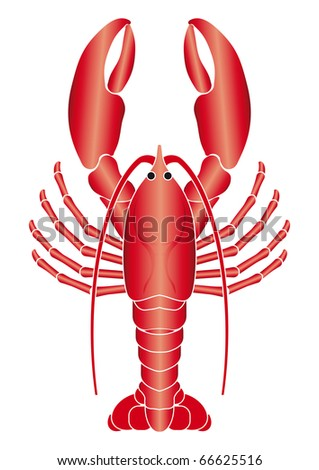 Lobster illustration relief