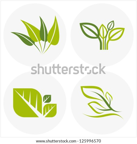 logos of green leaf - stock vector