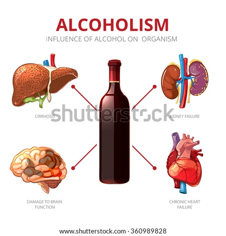 Effects Of Long Term Drinking On The Body