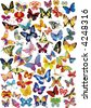 Lots of different multicolored butterflies - vector illustration - stock vector