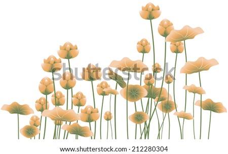 Lotus Flowers - stock vector