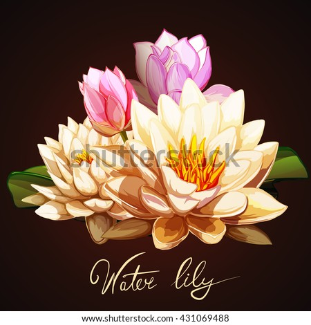 Lotus flowers and water lily with leaves. Set of design elements. Can be used in design, appearance, cards, wreath and etc. Hand drawn. All elements are separated and easy to move. Vector - stock. - stock vector