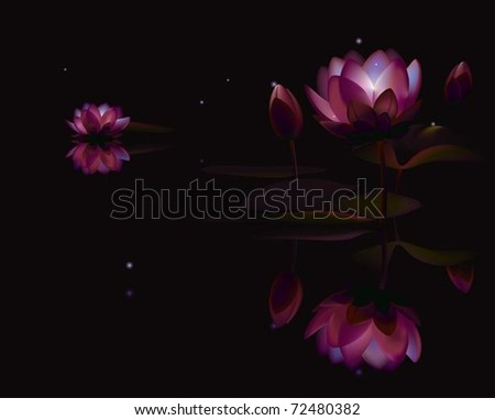 Lotus. The vector illustration of lotus flowers at night pond lighted by fireflies.