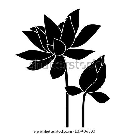 Lotus, water lily. Vector flower. - stock vector