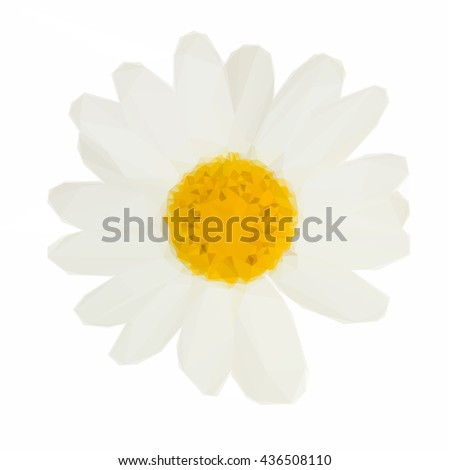 Low poly illustration of white daisy flowers - stock vector