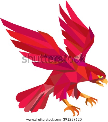 Low polygon style illustration of a peregrine falcon hawk eagle bird swooping viewed from the side set on isolated white background.  - stock vector