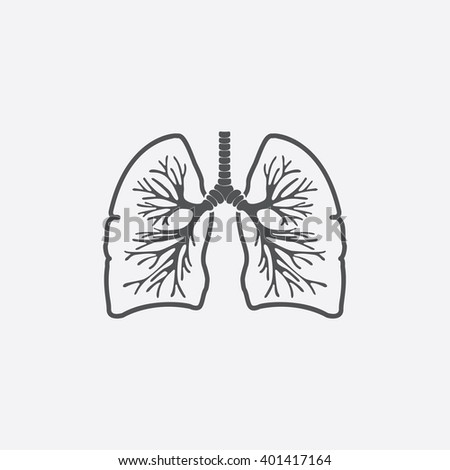 lungs stock images  royalty