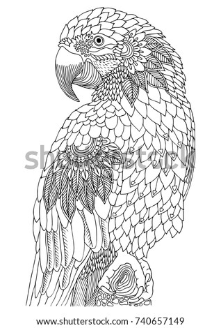 Macaw Hand Drawn Parrot Sketch Antistress Stock Vector 740657149 ...