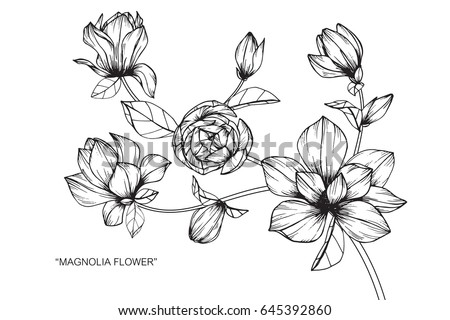 how to draw flower with ony lines