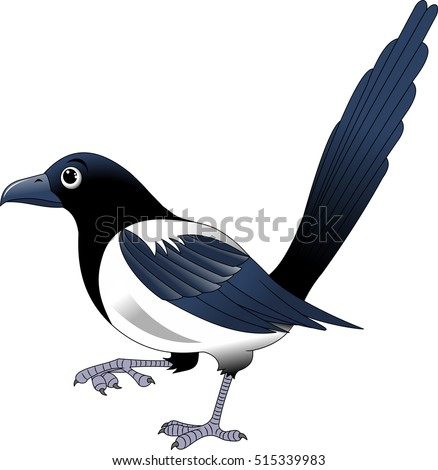 magpie cartoon vector illustration isolated on white background