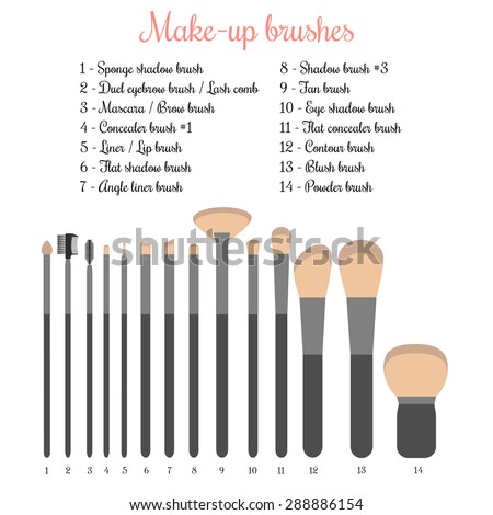Make Up Brush Isolated Stock Images, Royalty-Free Images & Vectors ...