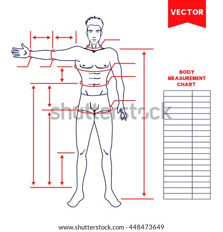 Male Body Measurement Chart Scheme Measurement Stock Vector
