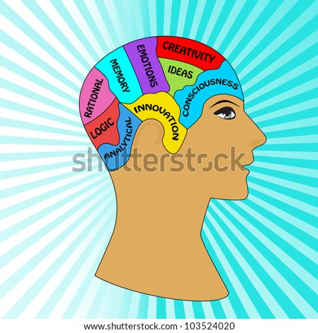 Male profile with brain sections (insert your own lables) - stock vector