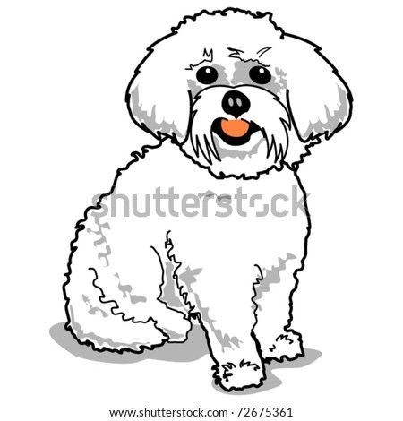 maltese coloring pages maltese or bichon frise dog dog breeds