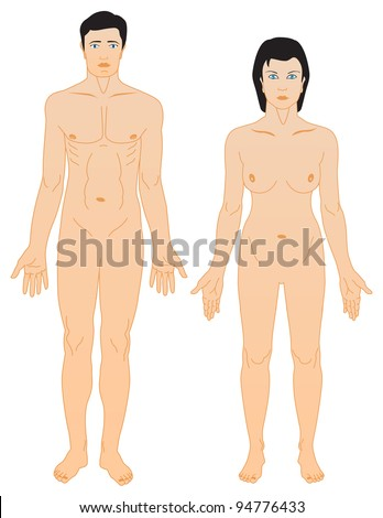 man and woman anatomy - stock vector