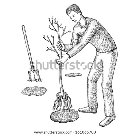 Man plants a garden - stock vector
