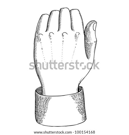 Man's hand knocks - stock vector