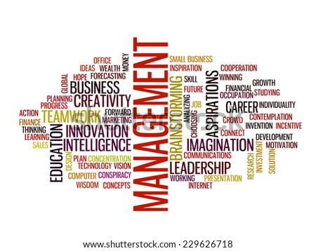 management strategy in 2015 concept word cloud - stock vector