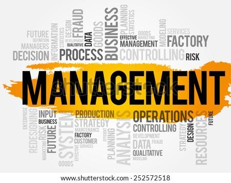 MANAGEMENT word cloud, business concept - stock vector