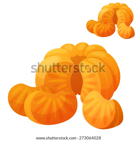 Mandarin. Detailed Vector Icon isolated on white background. Series of food and drink and ingredients for cooking. - stock vector