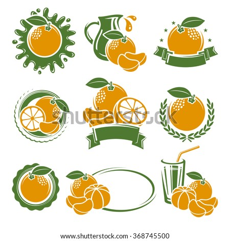 Mandarin labels and elements set. Vector - stock vector