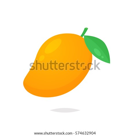 Mango fruit vector isolated