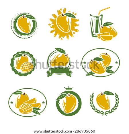 Mango labels and elements set. Vector - stock vector