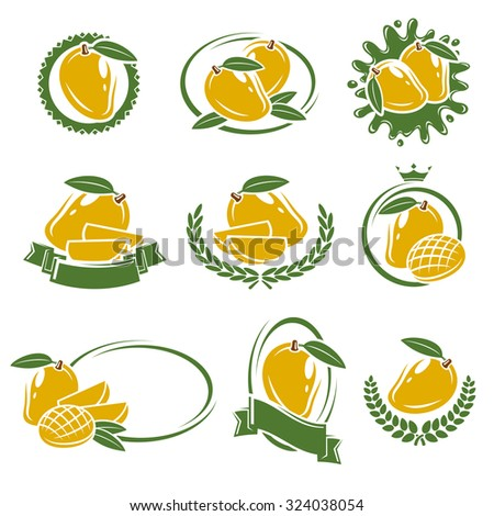 Mango labels and elements set. Vector - stock vector
