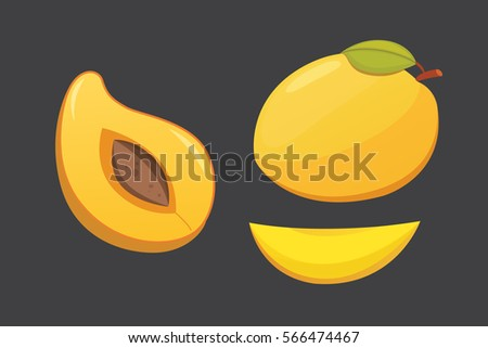 Mango yellow Fruit Isolated Vector illustration. Ripe fresh mangoes