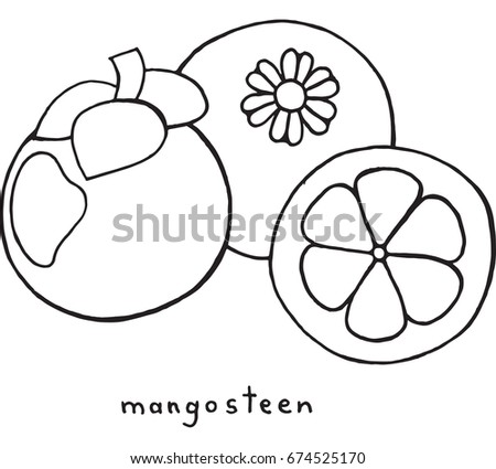 mangosteen coloring page graphic vector black and white art for coloring books for adults