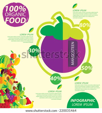 mangosteen, infographics. fruits vector illustration.