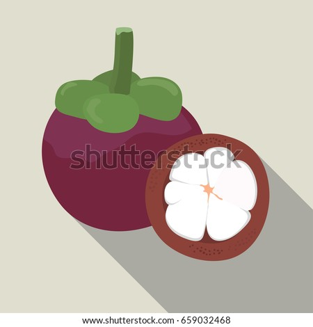 Mangosteen isolated , Mangosteen icon , Mangosteen on a light Background, vector illustration.