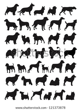 Many Dog Breeds in silhouettes - stock vector