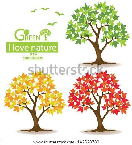 maple. tree vector illustration. - stock vector