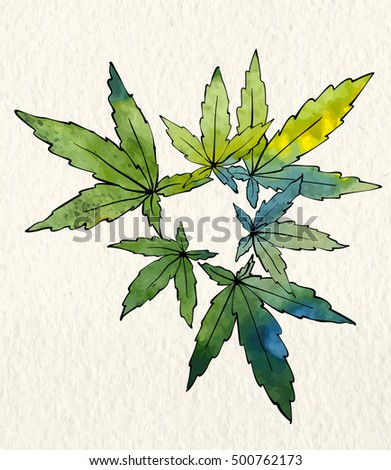 marijuana illustration papers Shop for marijuana drawing on etsy weed ganja marijuana ganja pot grass pipe rolling papers thc birthday marijuana botanical illustration.